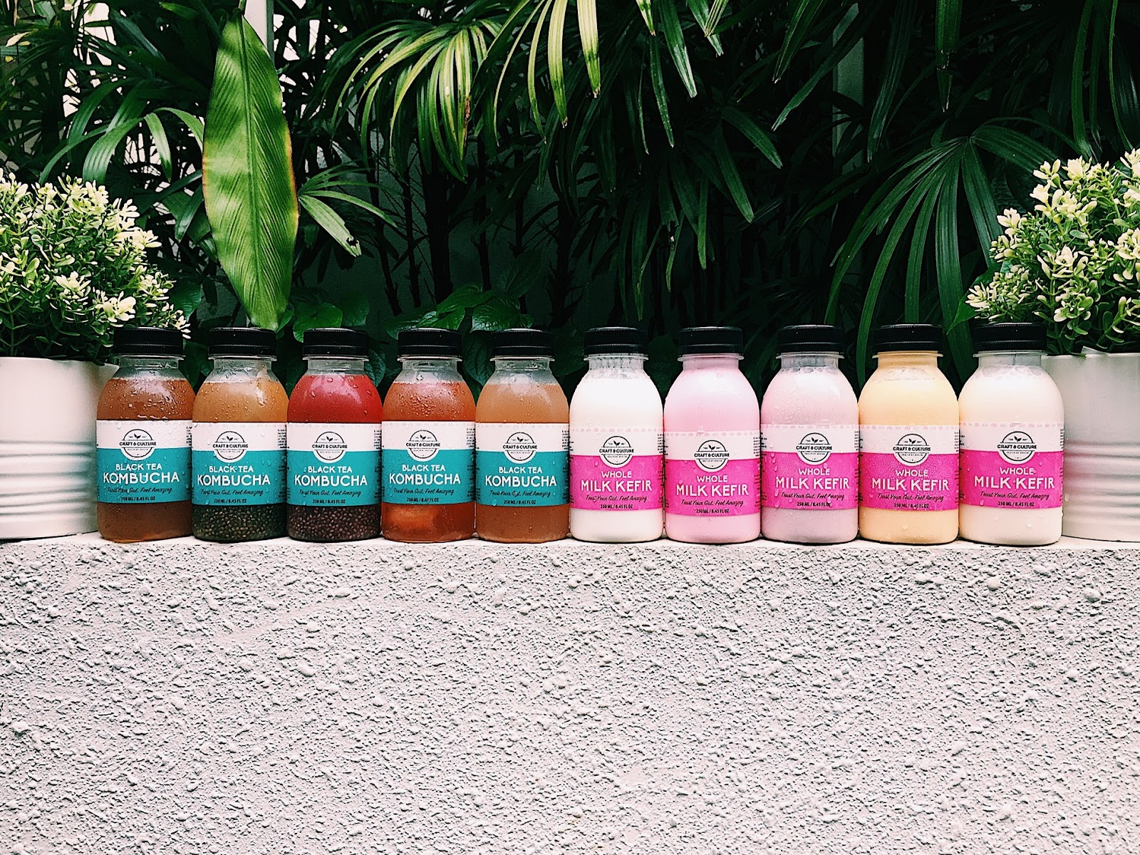 To many, kombucha and milk kefir may seem like yet another superfood fad, but to Winnie Ong and Lai Zhiwei, founders of Craft & Culture, they have witnessed the benefits of the functional beverages first hand.
